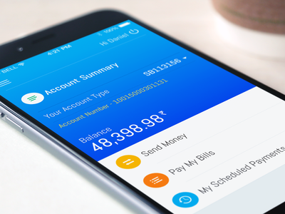 Accounts app clean colorful ios icons finance bank banking