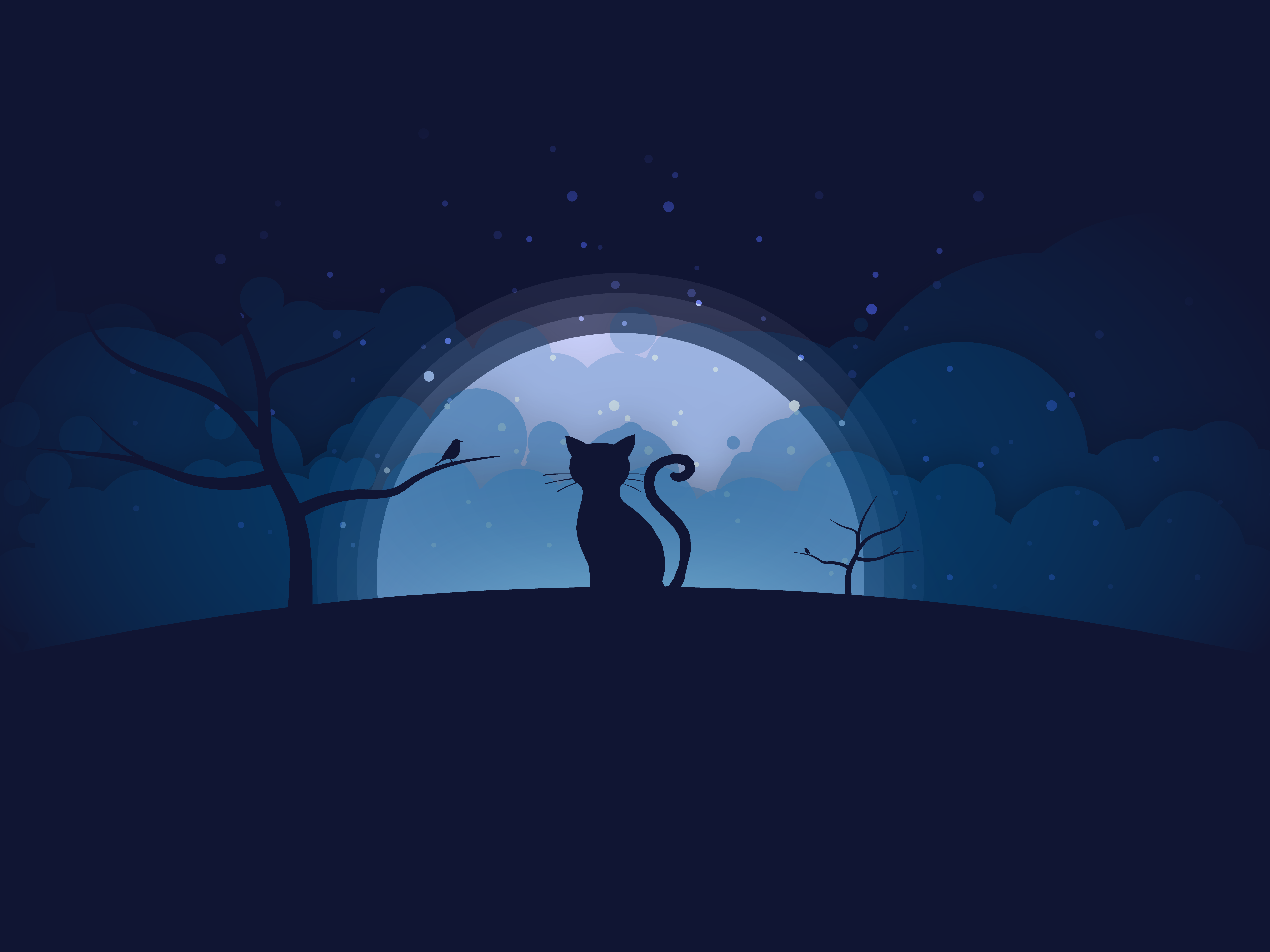 Coraline By Easy Design On Dribbble