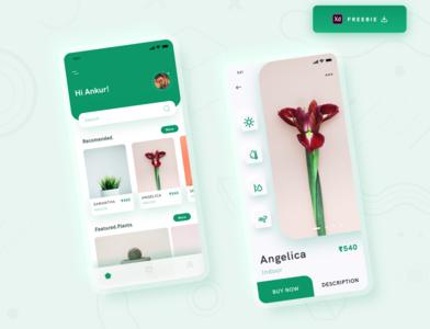 Daily UI Challenge 069/100 - Plant Shop App - Freebie