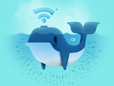 Whale-fi