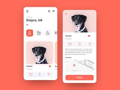 Pet adoption App UI concept icon dog layout interaction onboarding button ux flow clean pet addoption pet animal mobile app illustration list view interface ui colorful design concept app