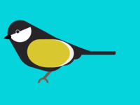 The Great Tit