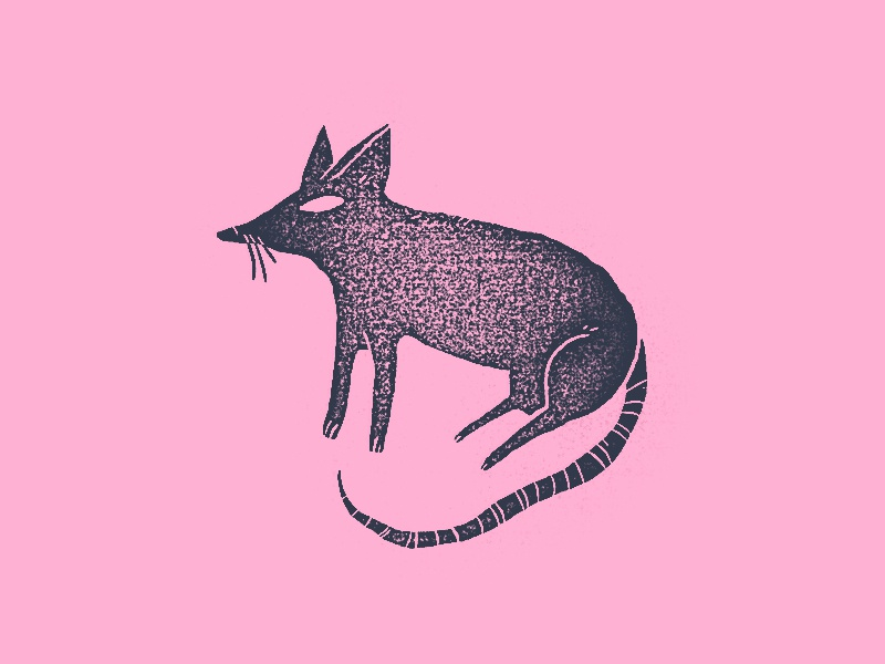 A Rat rat illustration pink blue gritty grit mouse dirty