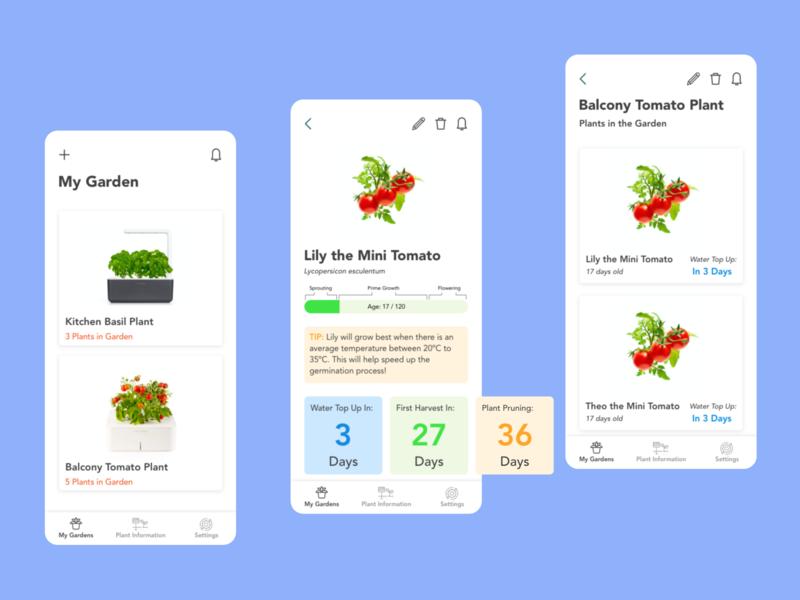 Daily UI 81 dailyui81 simple mobile clean modern minimal status update plantcare garden plants status dailyui adobexd adobe uidesign ui