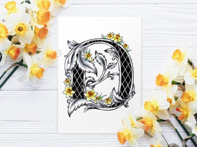Victorian Floral Alphabet - D (Daffodil) flowers daffodil alphabet floral botanical art lettering fonts illustration typography