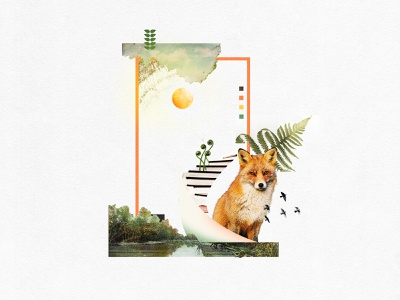 Little Fox Design Studio Moodboard designlife retro photoshop environment ecofriendly brand identity branding design collageart collage moodboard branding