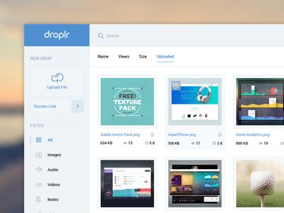 Droplr Dashboard like droplr dasgboard upload file link images audio video work portfolio