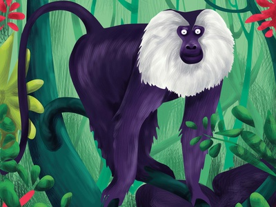 M O N K E Y money animal vectorart illustration art icon adobeillustator illustraion