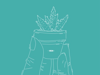Cactus minicactus kaktus cactus logo line art lineart line vector minimal illustrator illustration icon flat design branding