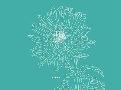 Sun Flower sun flower line art