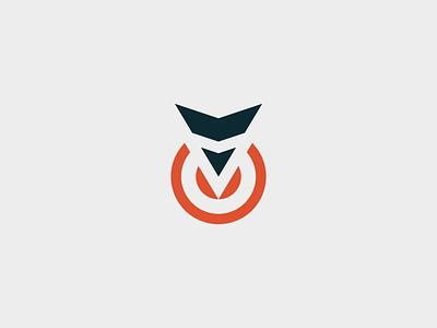Vizion Group - Logo Animation v eyesight eye logo animation distribution circle point orange group vision vizion logo branding motion graphics animation