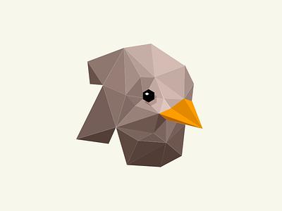 A Bird Study (II) polygon bird study illustration