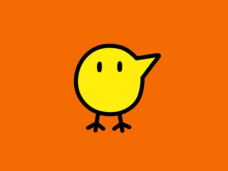 Bird4  chicken bird design illustration minimal