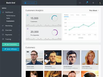 Bak-End Dashboard metrics graph back-end ui ux web flat analytics dashboard