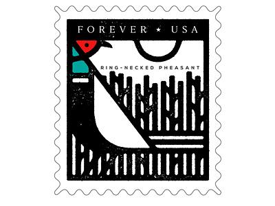 Pheasant Stamp pheasant stamp vector design animal south dakota bird illustration icon