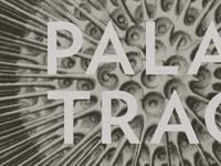 Palaxy Tracks Art