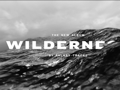 Wilderness Promo Video video bw knockout wilderness palaxy tracks black and white