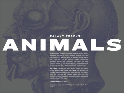 Palaxy Tracks site update