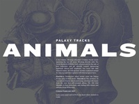 Palaxy Tracks site update