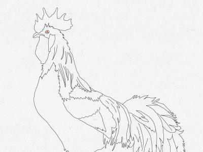 Rooster Drawering