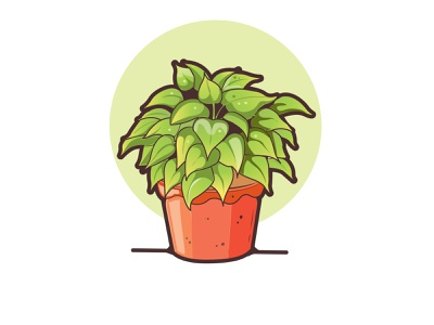 plant plant vector illustration