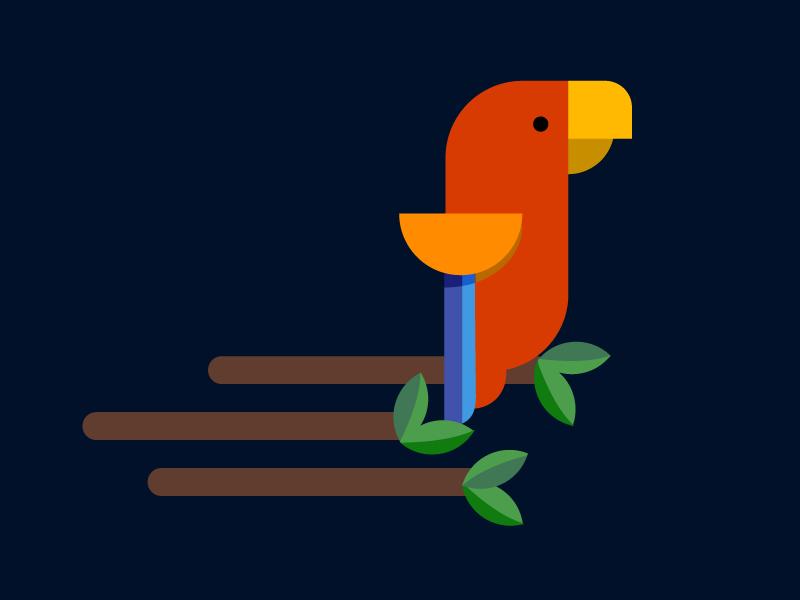 Parrot Illustration illustrator design birds flat illustration animal parrot