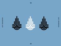 Davi Logo Concept