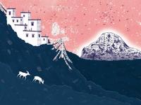 Tibetan Antelope on Mount Kailash