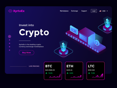 """XyrtoEx"" Crypto Exchange Website Concept"