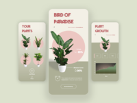 Indoor Plant Tracker