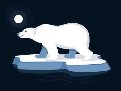 Ours Polar