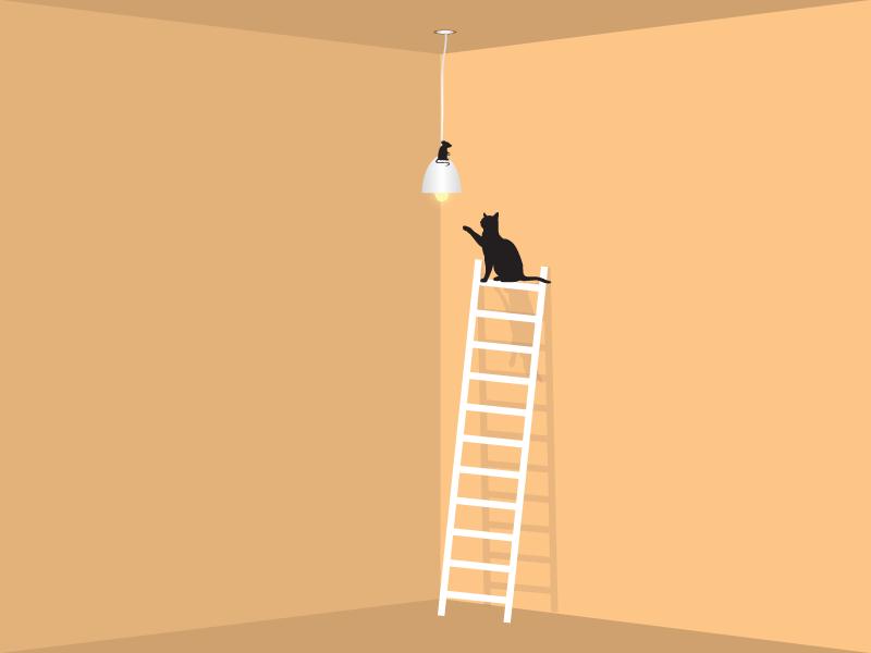 Cat jump fight cat kitten shadow background wall light ladder rat mousepad illustration cat illustration