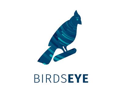 Birds Eye Business Intelligence Company white typography vector icon logo branding graphic digital creative illustration design