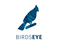 Birds Eye Business Intelligence Company