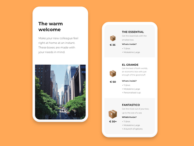 Founderbox mobile pricing website mobile pricing ui