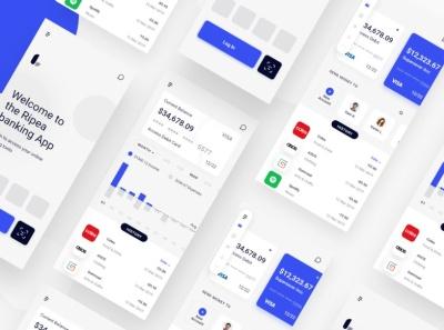 flutter wallet ui kit paytm paypal pay waller ewallet ecommerse wallet design ui banking flutter