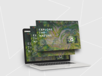 UI Design & Mockup for UI