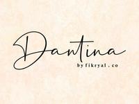 Dantina // handwritten font