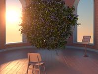 The Views / 17 flowers design 3d
