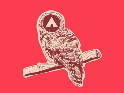Airwalk Owl airwalk owl