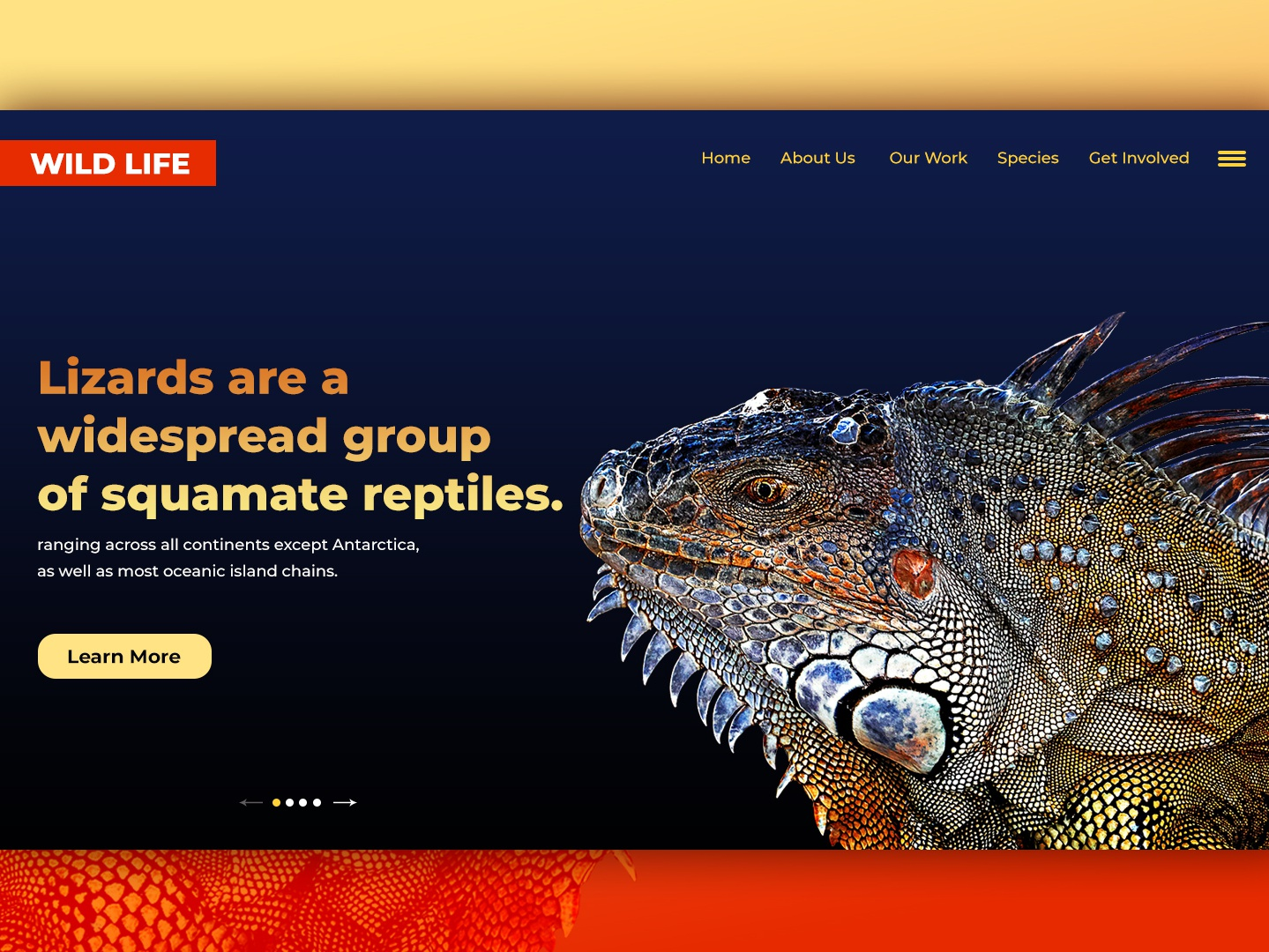 Wild Life Home Page typography illustration branding design web design lizard wild animal