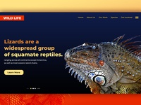 Wild Life Home Page