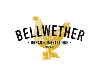 Bellwether Branding chickens bellwether homesteading farming texture type