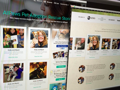 Pet Adoption Success Stories