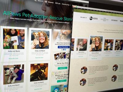 Pet Adoption Success Stories wip pet adoption success website stories