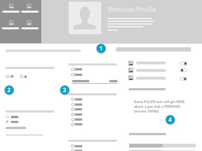 Pet Adoption UX Case Study - Behavior Profile Wireframe