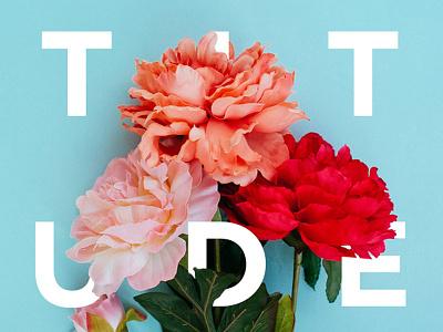 Gratitude typography flowers type