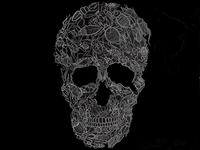 Bugs Skull