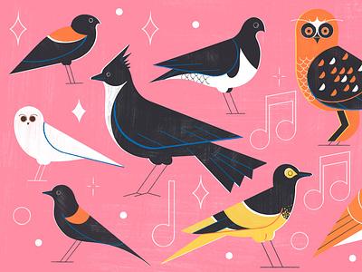 Forgotten Songs- Culture Trip birds flying airline travel illustration editoral design colour print editorial illustration