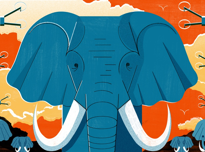Can AI Drones Save Africa s Elephants - Culture Trip animals elephants travel illustration editoral design print colour editorial illustration